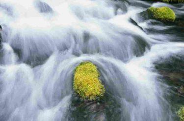 ミネラル豊富な生水が長寿の水